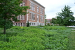 Native Plantings at Pfendler Hall and Agricultural Administration Building
