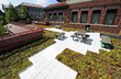 Schleman Green Roof