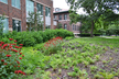Bioswale at Bill and Sally Hanley Hall
