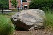 Granite Gneiss/Schist